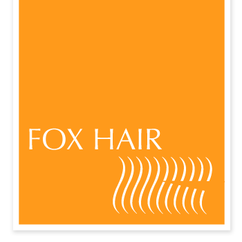 Fox Hair Chicago